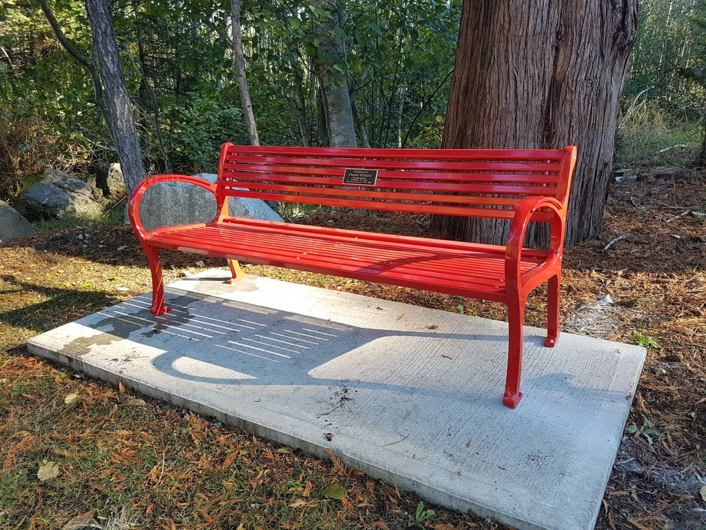 Chester Williams memorial bench